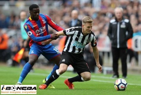 Crystal Palace vs Newcastle United 3h ngày 28/11