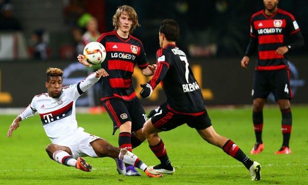 Bóng đá - Werder Bremen vs Bayer Leverkusen 20h30, ngày 05/05