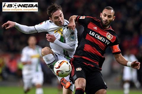 Bóng đá - Bayer Leverkusen vs Monchengladbach 21h30 ngày 19/01