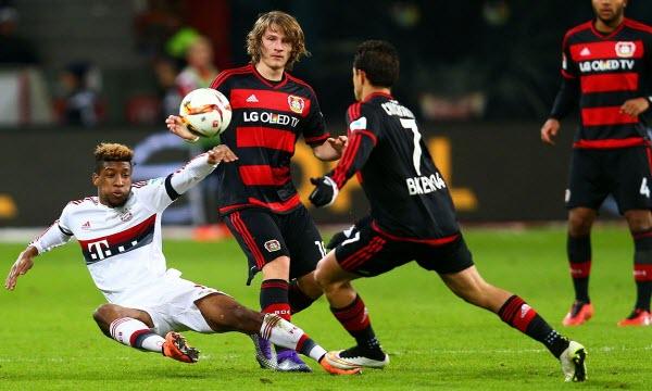 Bóng đá - Bayer Leverkusen vs Schalke 04 11/05/2019 20h30