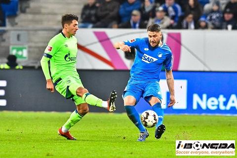 Dự đoán nhận định Schalke 04 vs Hoffenheim 21h30 ngày 07/03