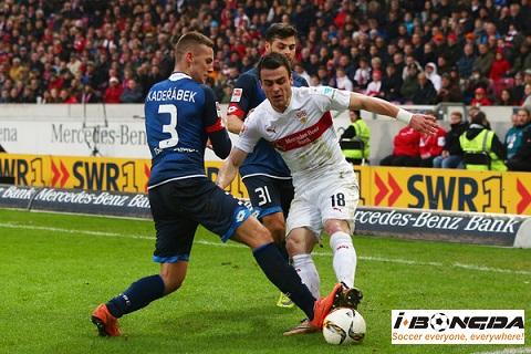 Thông tin trước trận Hoffenheim vs VfB Stuttgart