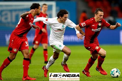 Bóng đá - Werder Bremen vs Bayer Leverkusen 00h00 ngày 29/10