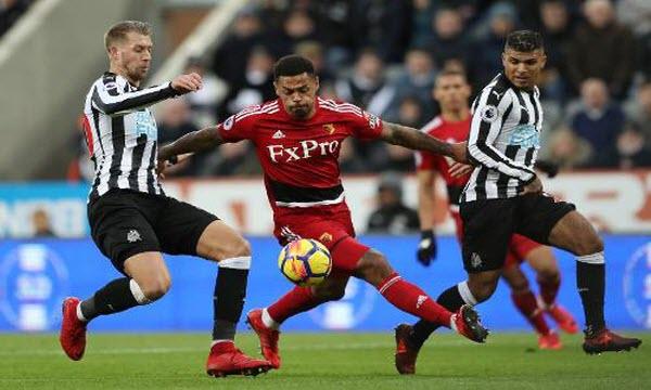 Bóng đá - Newcastle United vs Watford 22h00 ngày 26/01